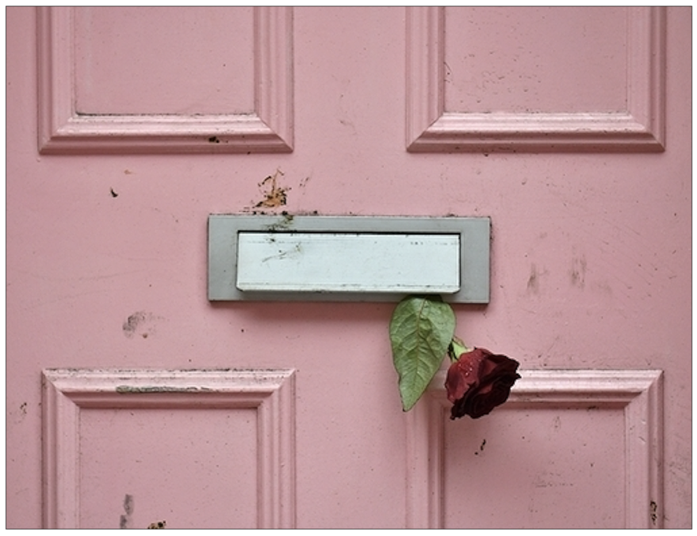 Poignant: a lone rose left by a well-wisher at the door of Caroline Flack's home in Islington, North London, (c) PA